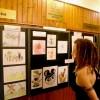 A Tetz Iskola növendékeinek alkotásaiból nyílt kiállítás