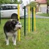 Átadták a kutyafuttatót