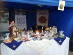 Pest megye bemutatkozott az Értékek Napja rendezvényen